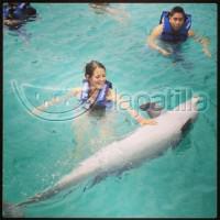 Indira con los delfines