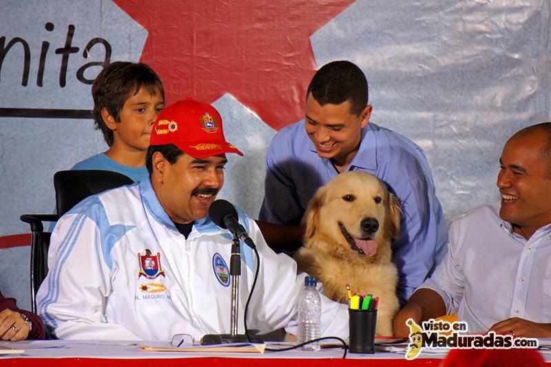 Maduro con animales mision nevado mascotas