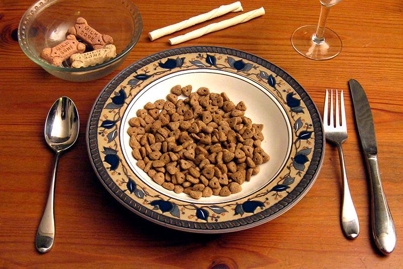 perrarina-comida-en-la-mesa-pobres