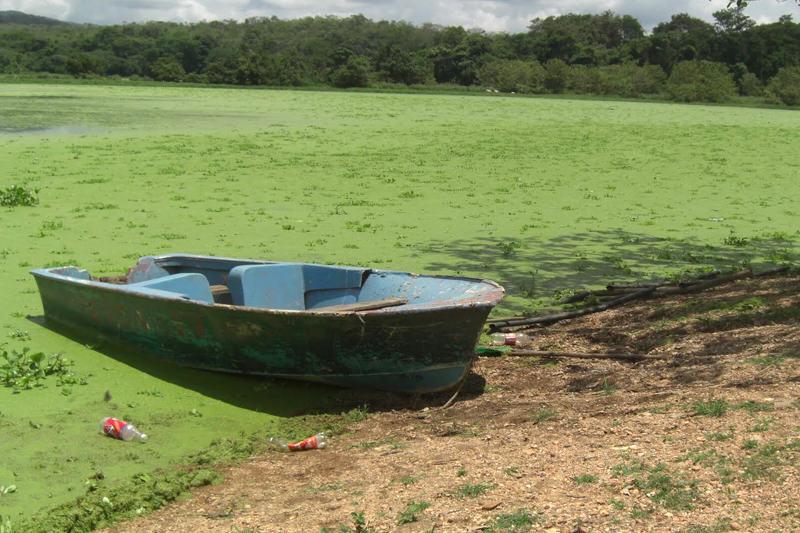 Créditos: movimientoporlacalidaddelagua.blogspot.com