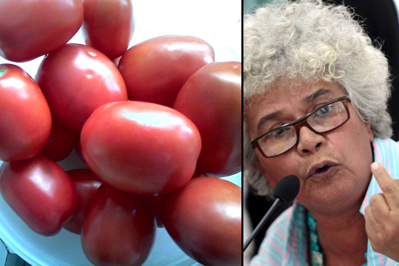 TOMATES-vive-tv-ministra-agricultura