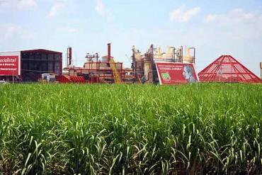 """¡GRAN FARSA! 3.000 toneladas de azúcar importada llegan al Caaez para """"aparentar"""" producción"""