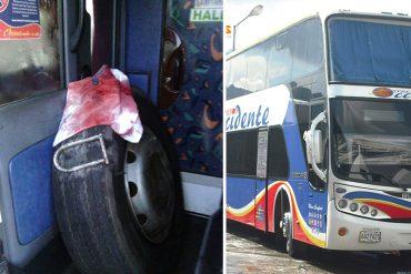 ¡HAMPA DESATADA! Atracaron a pasajeros de un Expresos Occidente y golpearon al chofer