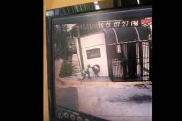 ¡UN HORROR! Delincuentes golpearon a una joven porque no soltaba el celular (+Video)