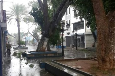 ¡ENTÉRESE! Más de 1.000 viviendas afectadas dejó paso de la tormenta «Bret»