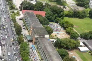 ¡IMPERDIBLE! La impresionante e interminable cola de venezolanos que participan en plebiscito en Panamá