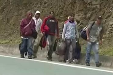 ¡AGOBIANTE! Hasta 20 días caminan venezolanos para pasar a Colombia en busca de oportunidades (Video)
