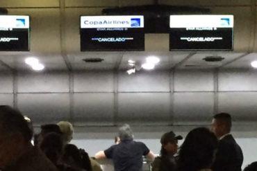 ¡SEPA! Suspensión de Copa Airlines afectaría a un promedio de 734 pasajeros por día