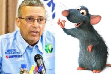 ¡POR FAVOR! Ya no es una iguana sino una rata: Motta Domínguez no sabe a quién culpar por los apagones (+Fotos)