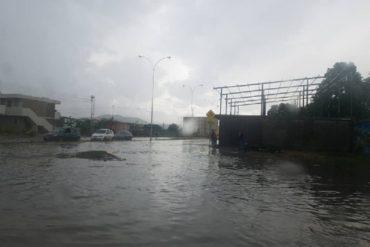 ¡VÉALO! Así de inundado quedó el puente Hugo Chávez en Cumaná tras el palo de agua (+Fotos)