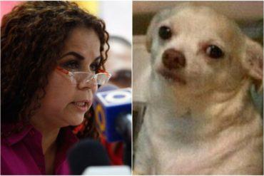 """¡NO ME DIGAS! Las descaradas declaraciones de Iris Varela: """"El chavismo siempre se ha defendido con la verdad"""" (+Video)"""