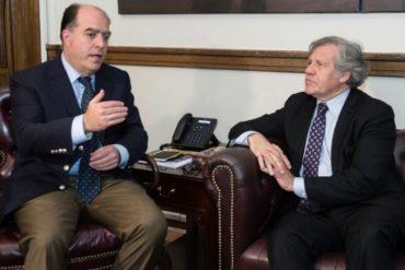 ¡SEPA! Almagro celebra designación de Julio Borges como Comisionado Presidencial para Relaciones Exteriores