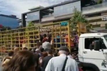"""¡INSÓLITO! En Chile comienzan a usar """"perreras"""" como medio de transporte (+Video)"""