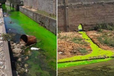 ¡GRAVE! Reportan derrame de una rara sustancia verde en la refinería Cardón: temen que afecte a las playas cercanas (+Fotos)