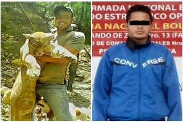 ¡INDIGNANTE! Detenido sujeto que mató a un puma en Falcón y publicó las fotos en redes: será imputado por caza ilícita e instigación para delinquir